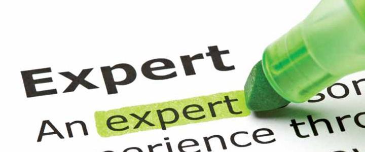 Daubert Challenges of Experts